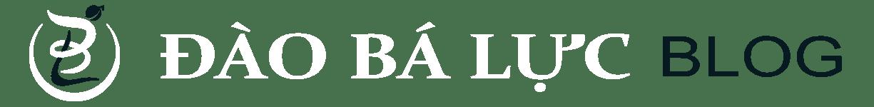 Đào Bá Lực – Hướng Dẫn Kiếm Tiền Online & Digital Marketing